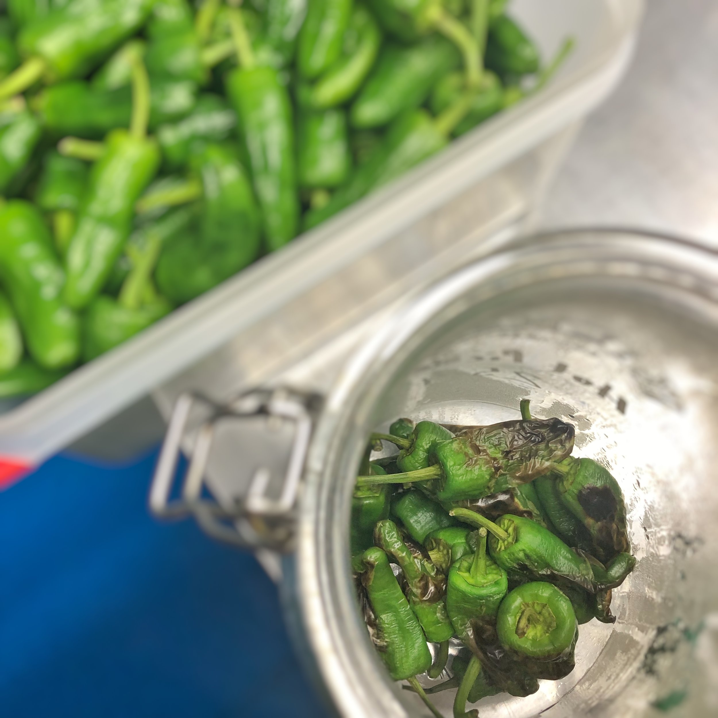 Hot pickling charcoal Padrons