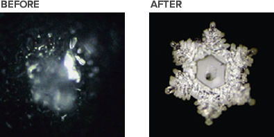 Tap water crystals before and after the water  was  added for only 3 minutes to the Cadus Water Pitcher.