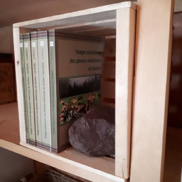 Usages autochtones des plantes médicinales du Québec   collection de 5 livres