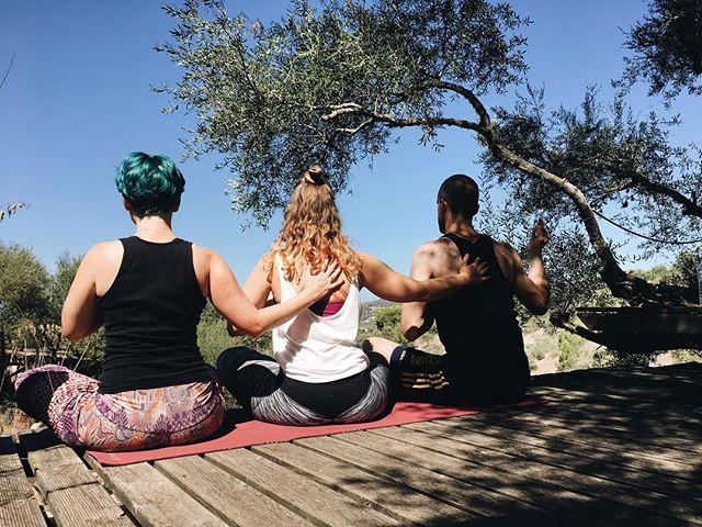 Vor anderthalb Jahren saßen @laraleonielove , @roman.dachsel und ich auf Mallorca gemeinsam in der Natur, meditierten und flowten durch einige Asanas. Es war Laras Geburtstag und sie hätte mich damit nicht mehr beschenken können. Die Liebe in der Natur Yoga zu praktizieren ist seit dem ersten Teachertraining in mir verwurzelt. . Heute hat @fvckluckygohappy einen Beitrag inklusive meinem Schwedenretreat gepostet. Genau dort möchte ich diese Liebe zum Yoga in der Natur und dem Rückzug zum Wesentlichen mit euch teilen. . Morgens in Stille unter den Bäumen meditieren, Asanas mit dem Wind in den Haaren, Pranayama am See. Und wie @rebeccarandak schreibt: ganz viel Bäume umarmen. Ich kann es kaum erwarten. . Danke, Lara und Roman, für die Inspiration zu diesem Retreat. Ein Retreat mit dem Ziel sich zu Erden und zur Ruhe zu kommen. . #yogaretreat #yogaretreat2019 #yogareise #schweden #camping #mallorca #freundschaft #verbundenheit #yoga #asana #meditation #pranayama #liebe
