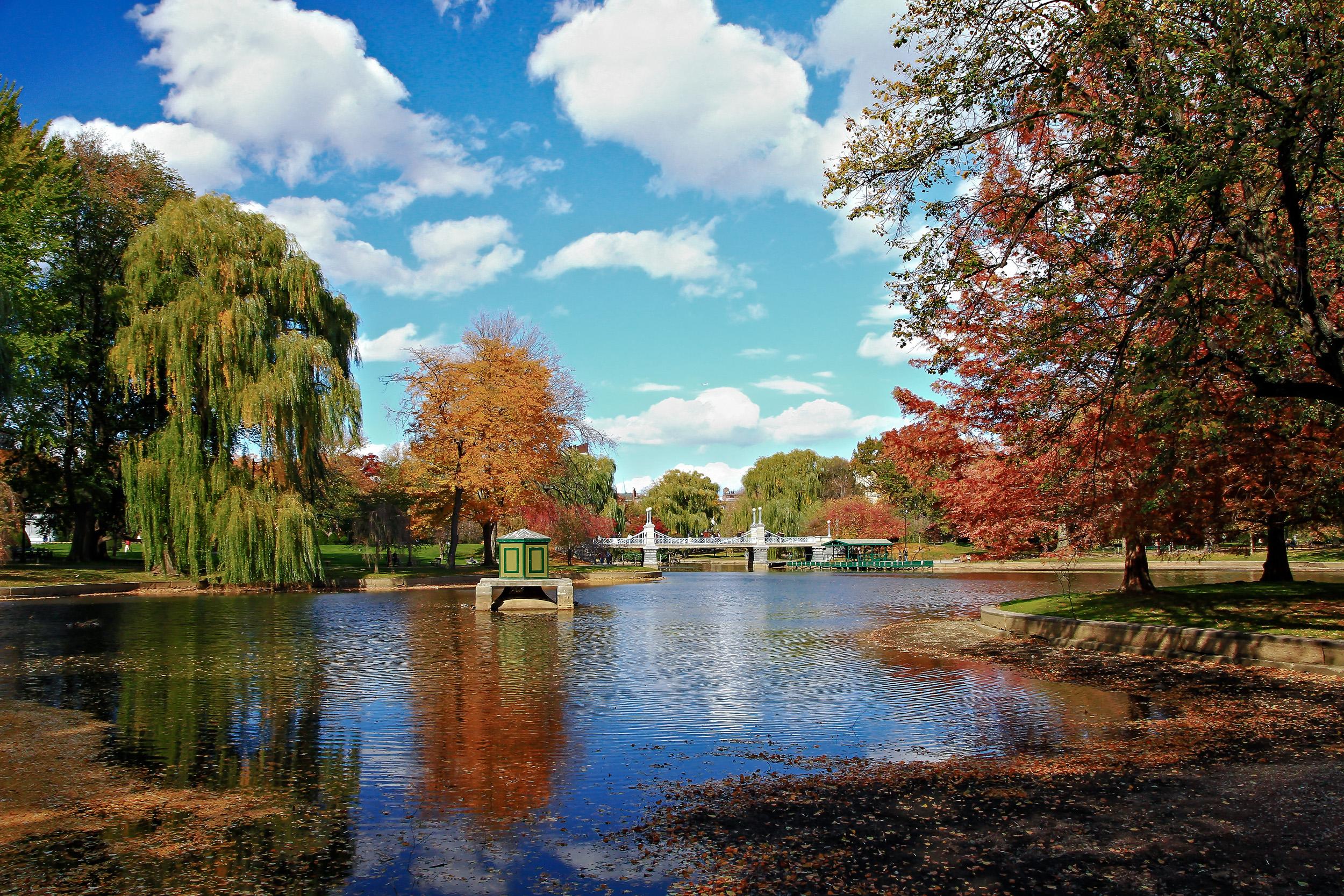 Boston_Garden_Miami_Fort_Lauderdale_commercial_photographer_Franklin_Castillo.jpg