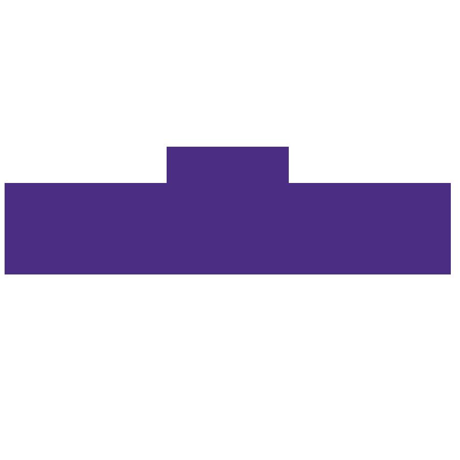 Wahington Univeristy.png