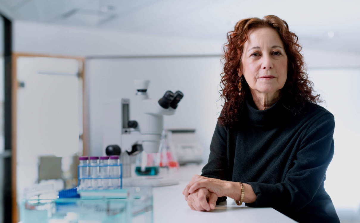 Professor Judith Campisi  (photo credit:  Buck Institute for Research on Aging )