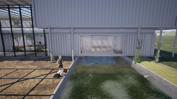 Aquaponics Fish Pond