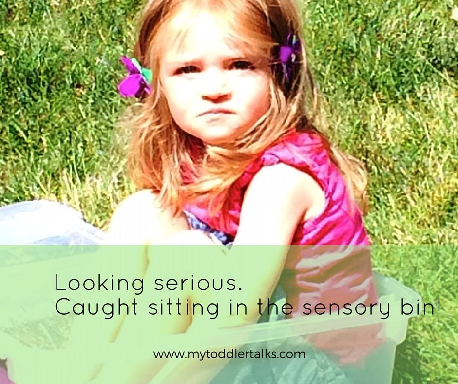Sensory Bin Fun My Toddler Talks