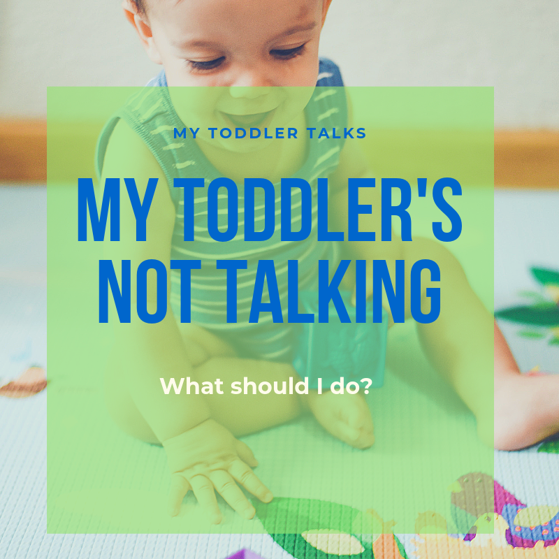 My Toddler's Not Talking Post 1.png