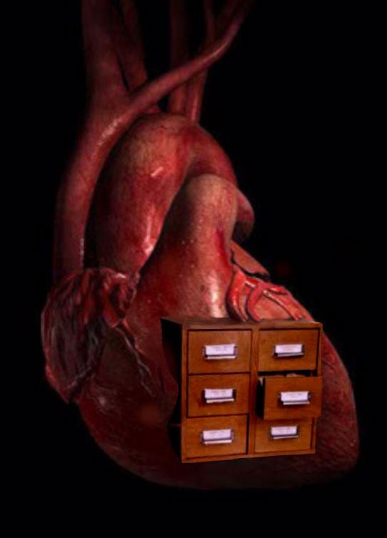 Heart index