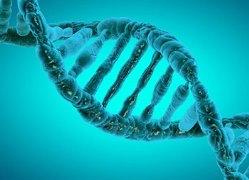 epigenetics.jpg