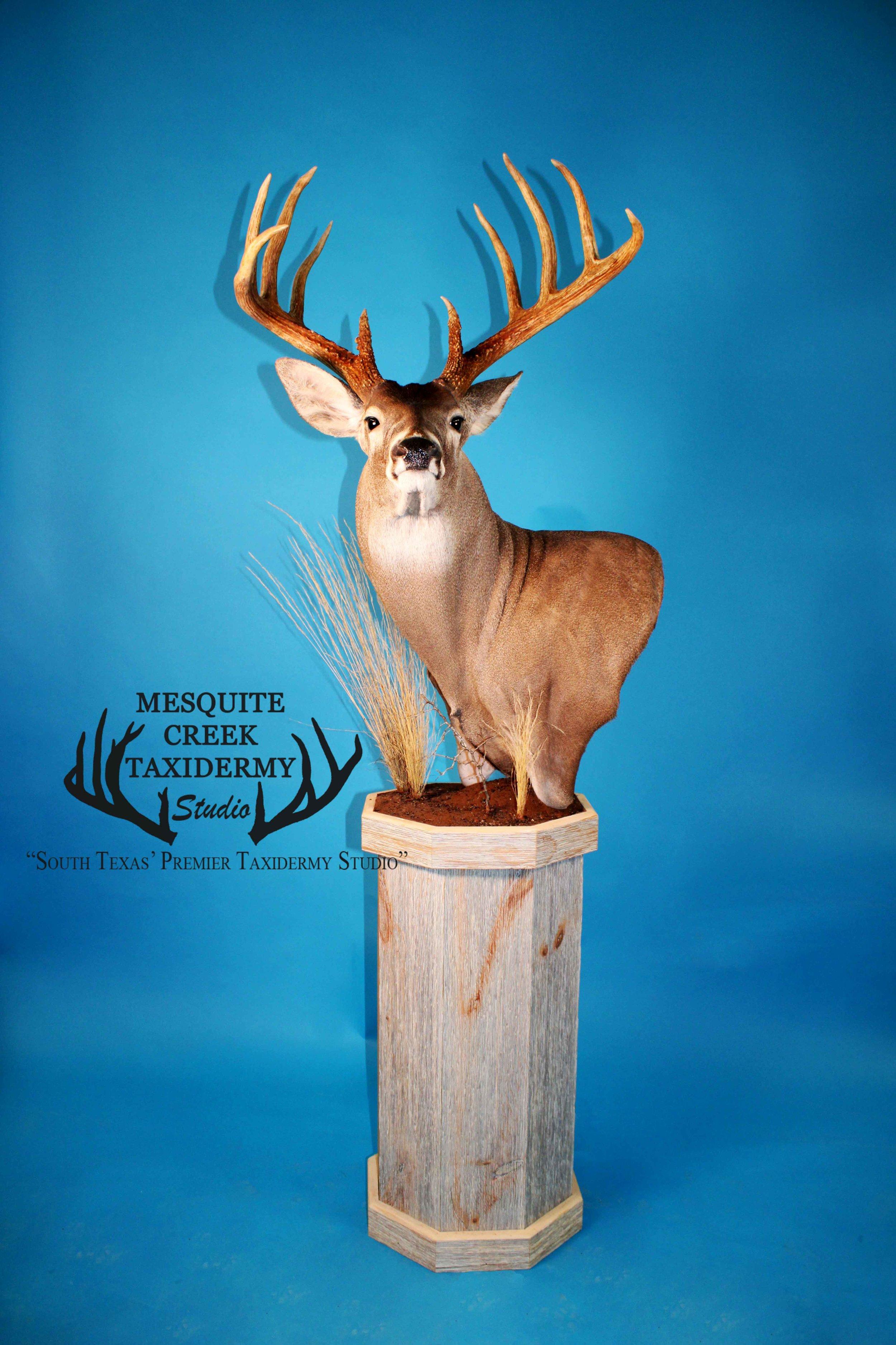 Cactus Jack Trophy