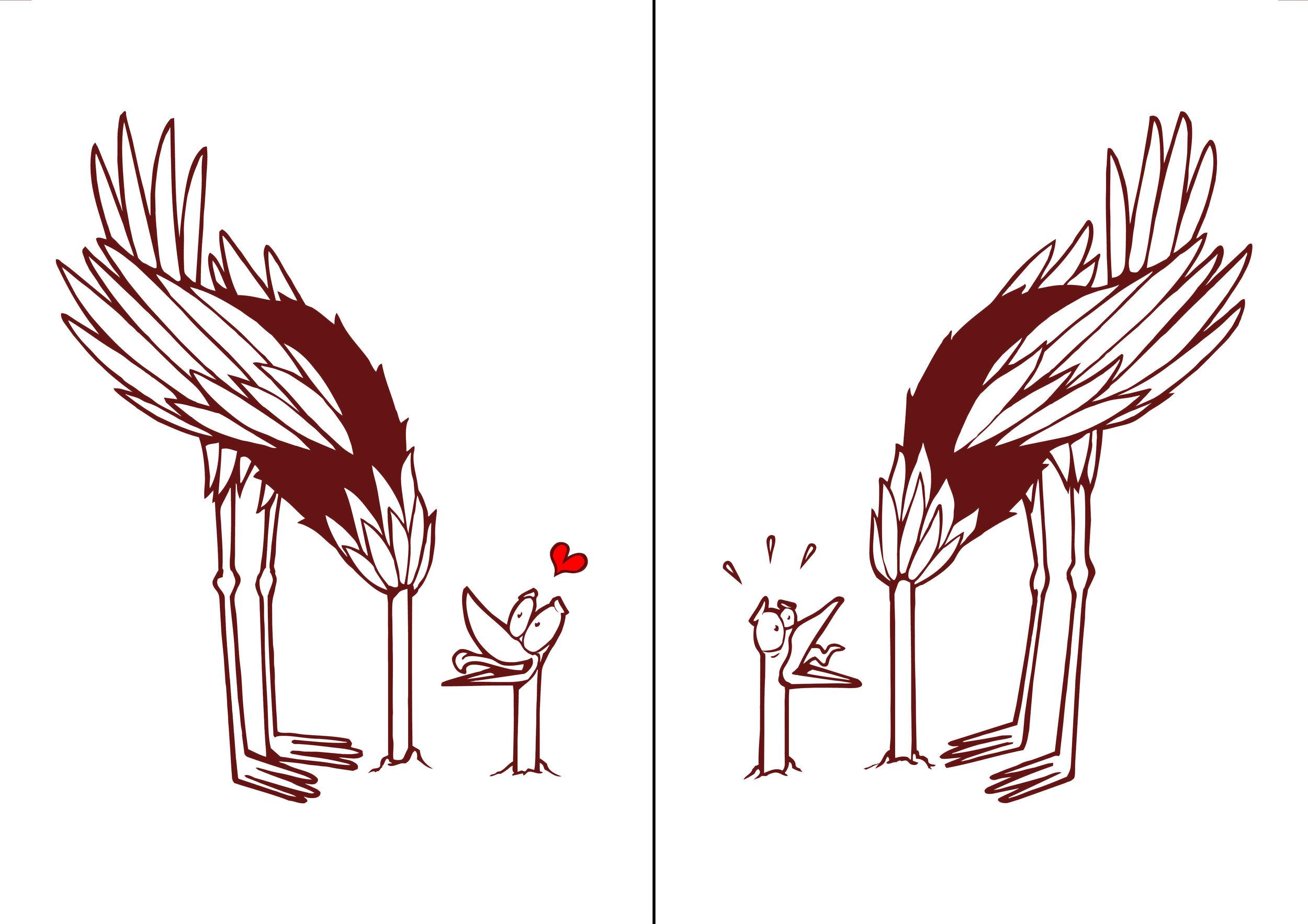ostrich1&2.jpg