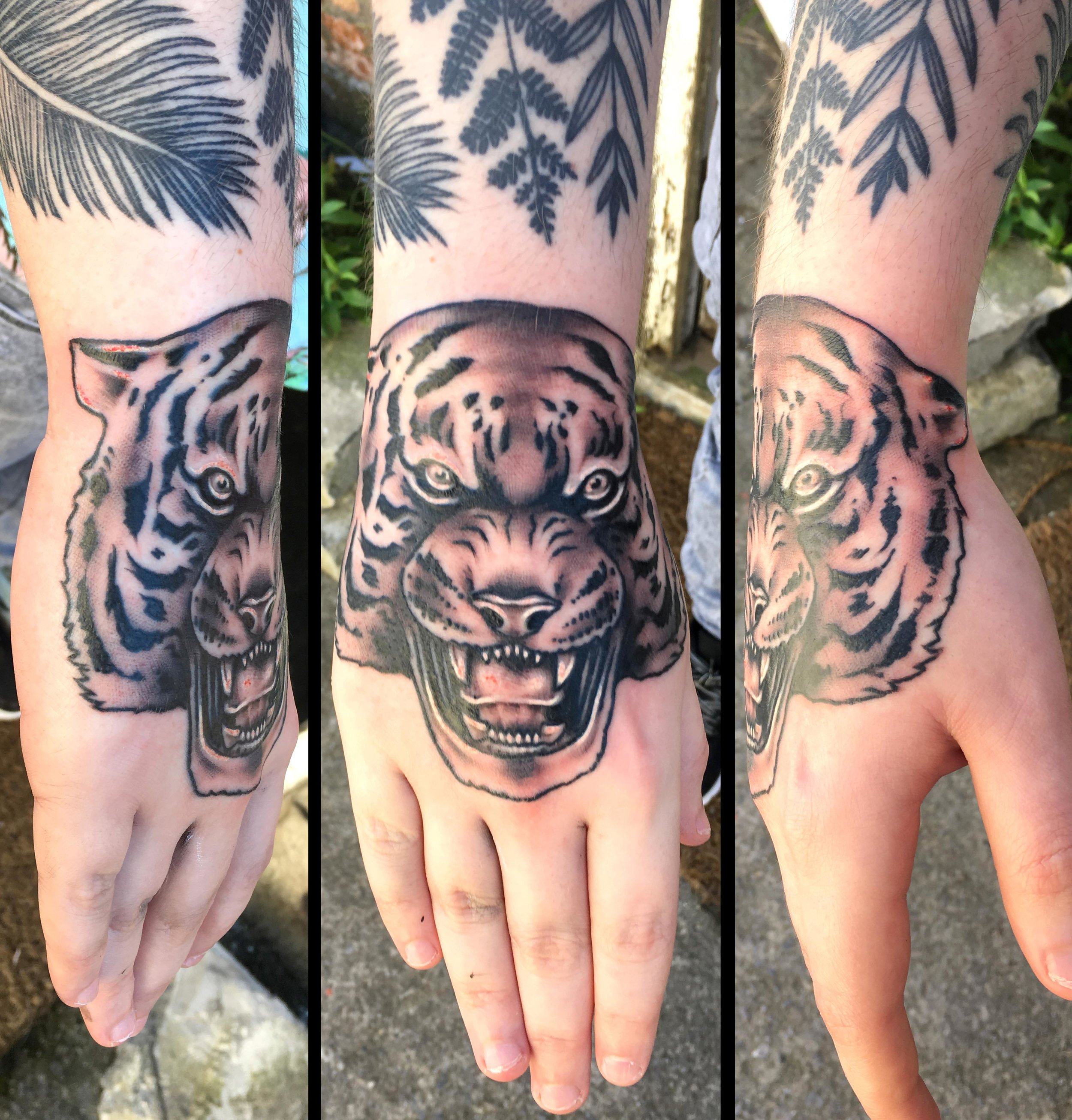 75 tiger hand tattoo sepr.jpg