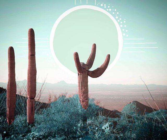 Dreamiest desert 🌵 ✨  Artist: @madisonperrins