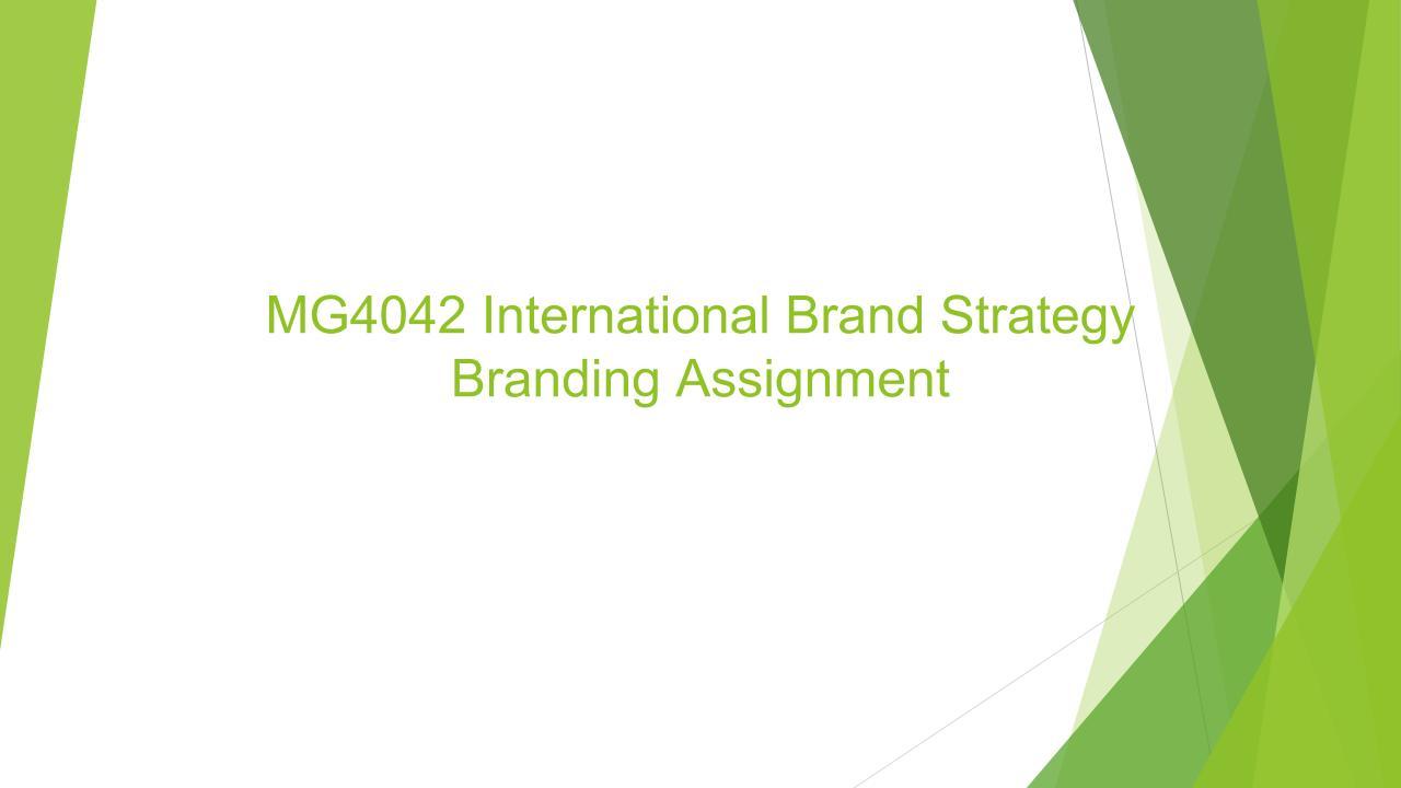 MG4042 International Brand Strategy Assignment.jpg