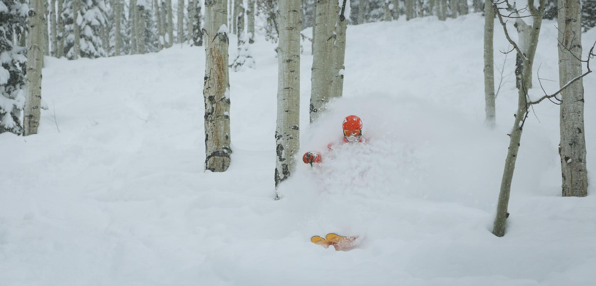 Backcountry ski day.jpg