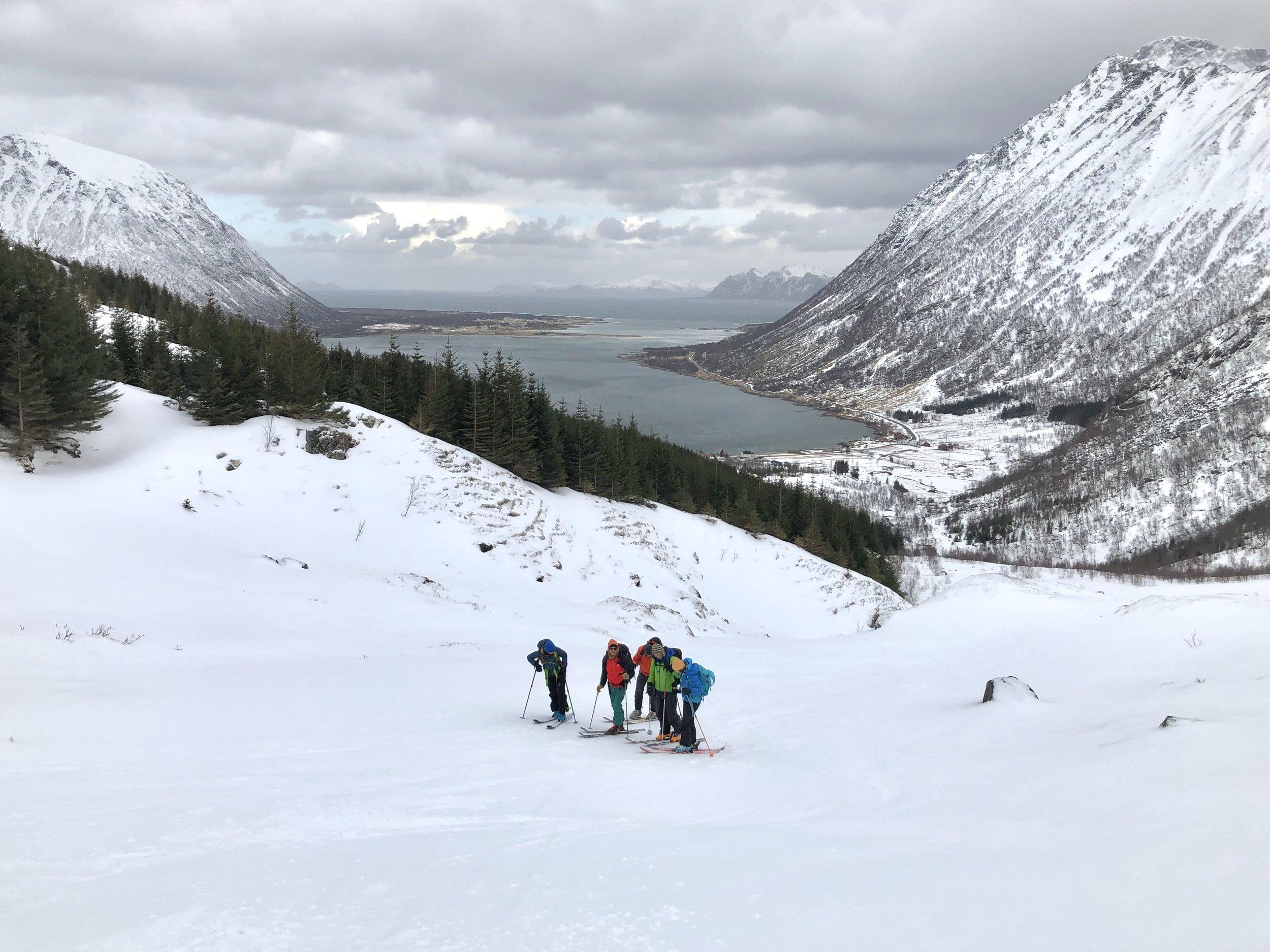 Vi valgte mere skikjøring (og ny opptur) her nede fra Morfjordskaret og Morfjorden. Vi tok fellene på ved ca 70 moh