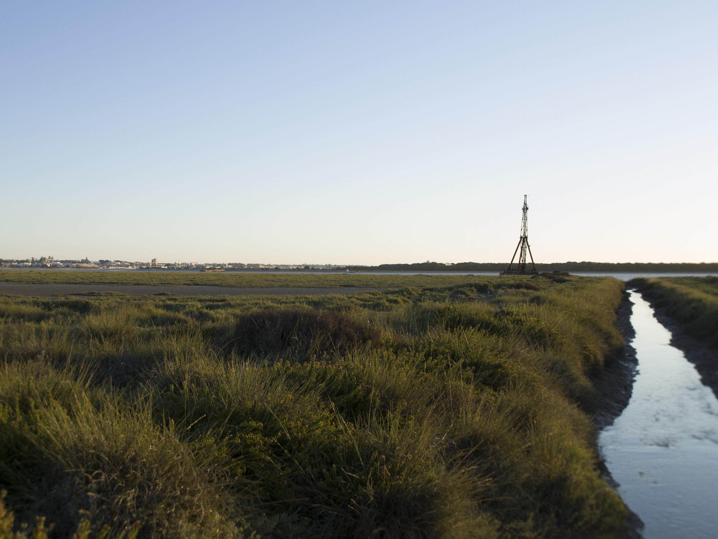 Parque Natural de Doñana a 200 metros