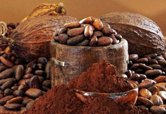 Cacao powder, nibs, beans and pod