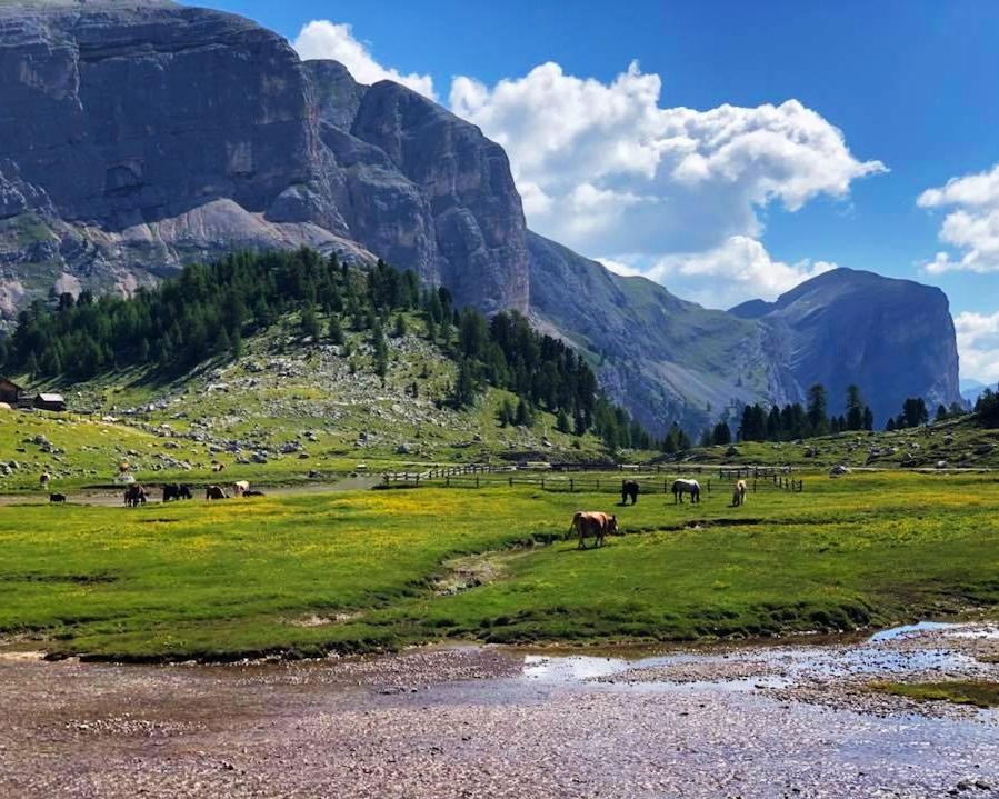Dolomite-mountains.jpg
