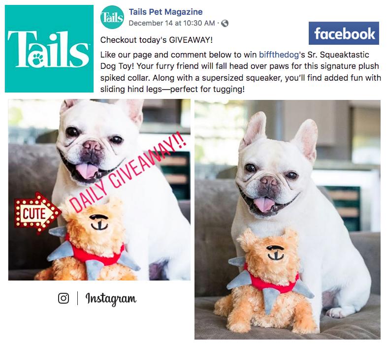 TAILS Pet Magazine — December 14, 2018