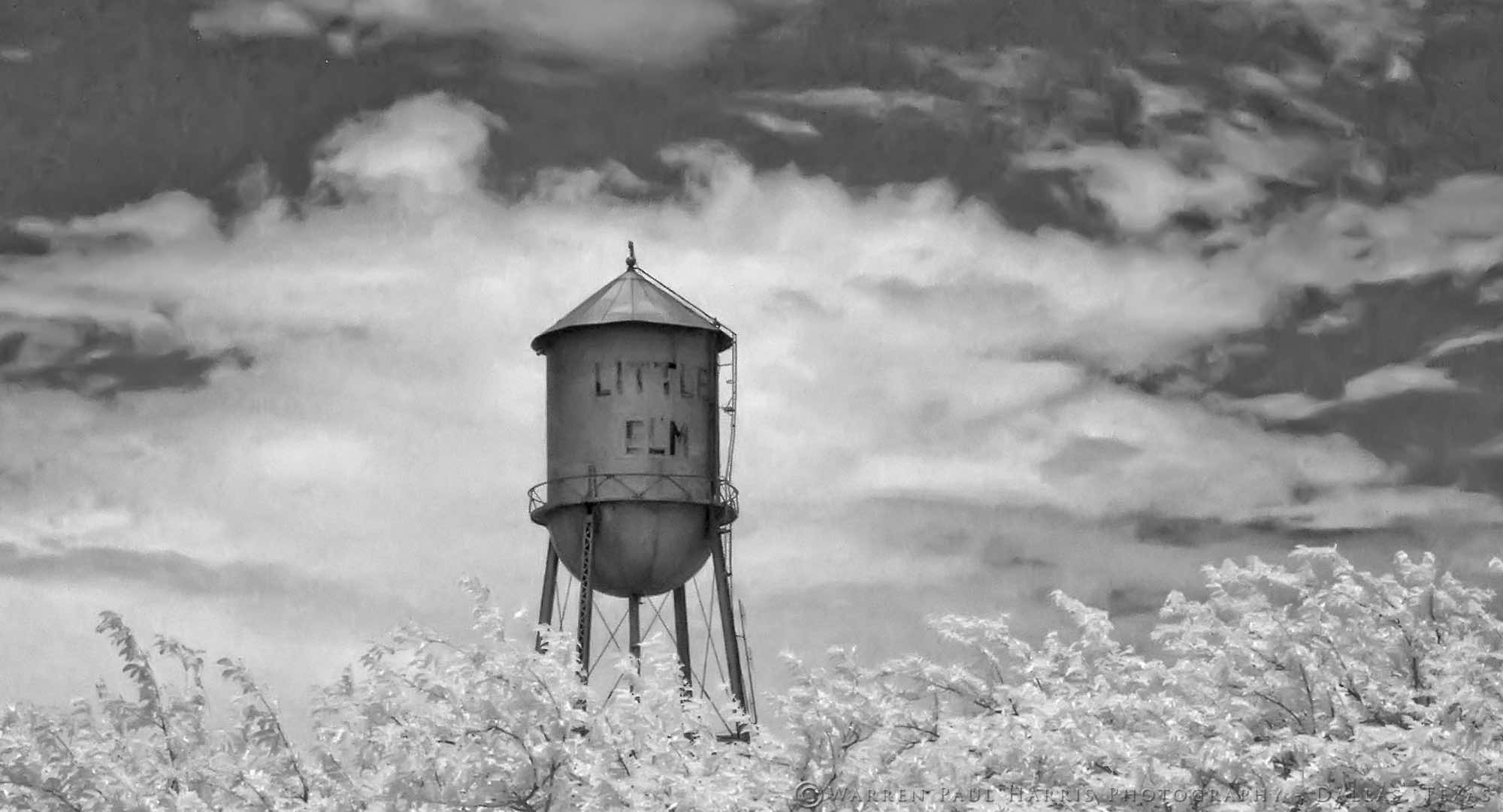Little Elm, 2007. Infrared photography, 40 x 22 inches