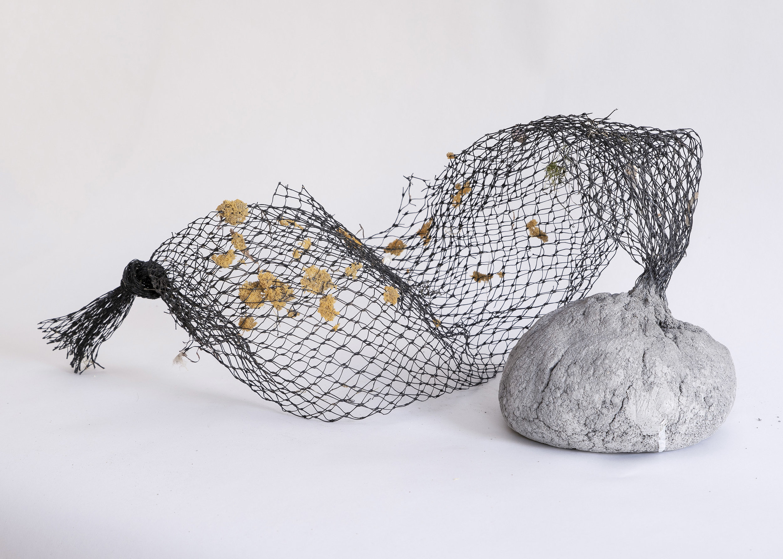 Object 7, 2018. Concrete, netting, fish eggs. Dimensions variable, $475