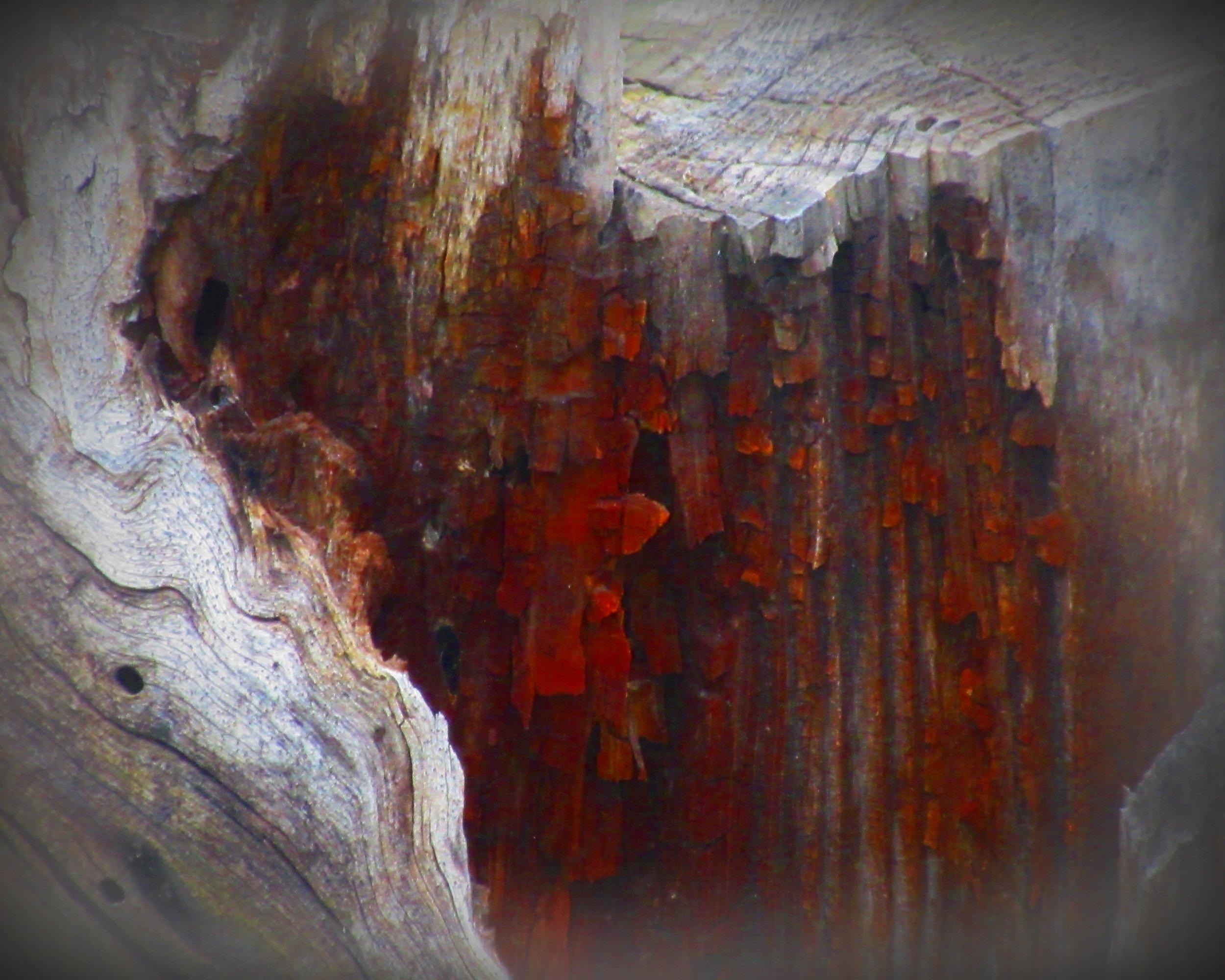 Sanguine Falls