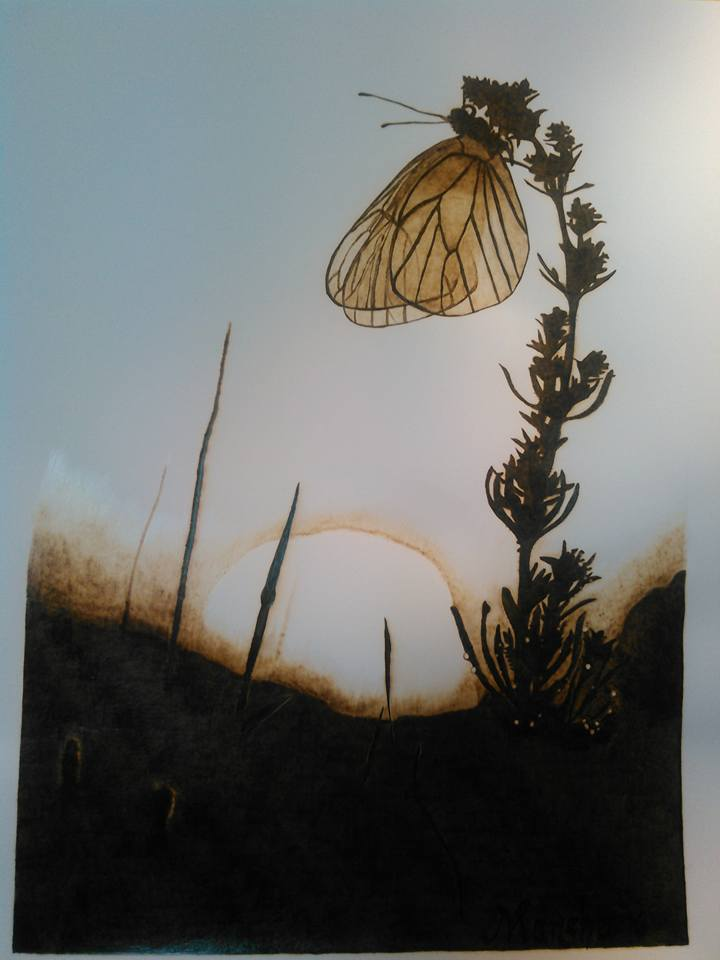 Butterfly Sunrise, 2016, Pyrography, 17 x 14, $275