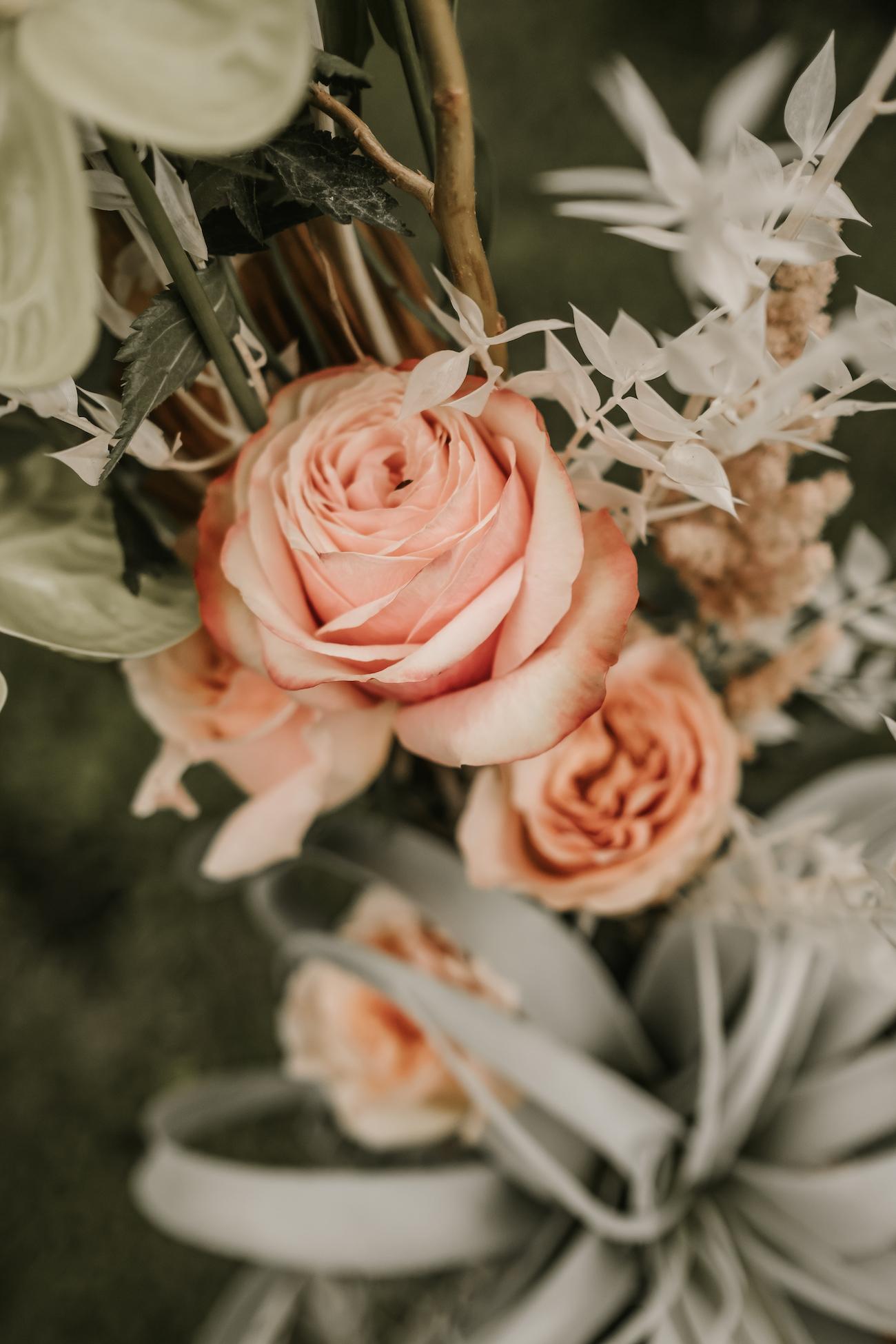 Saxon-Manor-Tampa-Weddings-3.jpeg