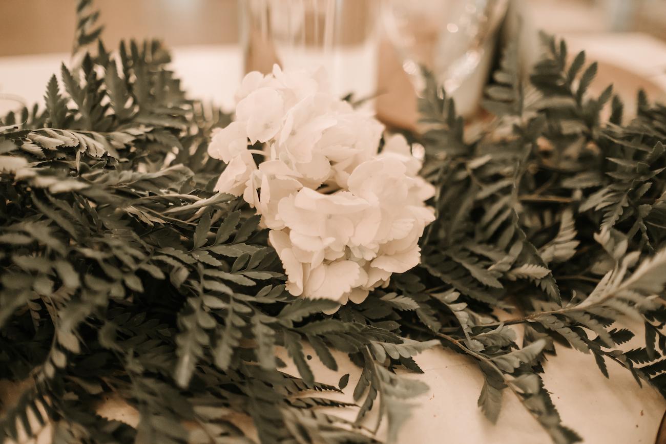 Saxon-Manor-Tampa-Weddings-211.jpeg