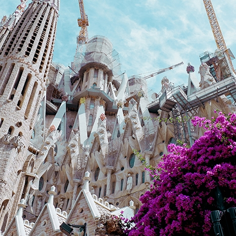 Contemporany Architecture & Sagrada Familia - We will discover the new architecture of:👉Frank Gehry👉Herzog and Meurog👉Benedetta Tagliabue and also the👉Sagrada Familia built by Gaudí.