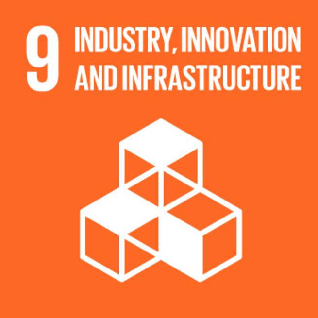 SDG EN 09.png