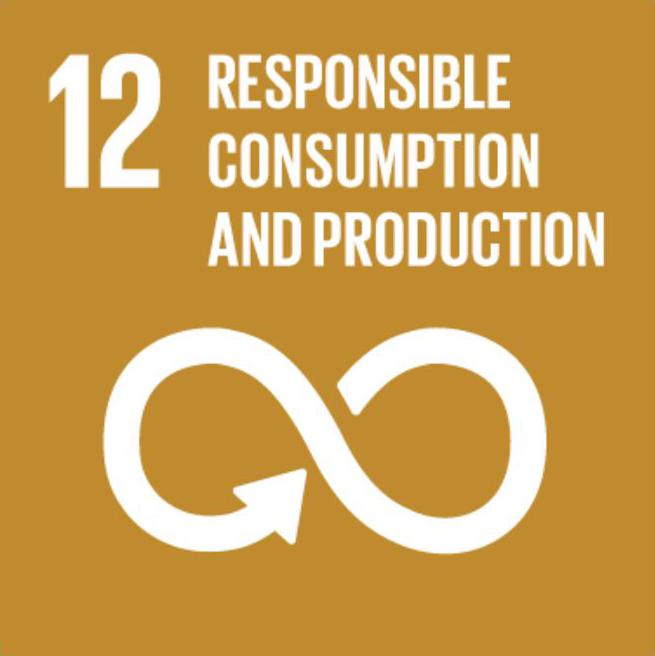 SDG EN 12.png
