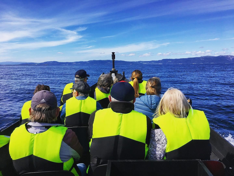 DAGLIGE TURER - Vi tilbyr flere offentlige turer daglig hele sommmeren. Sightseeing • Fiske • Solnedgangsturer