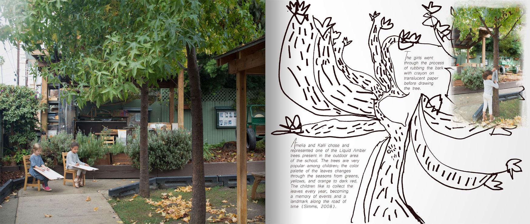 observation-book-p1.jpg