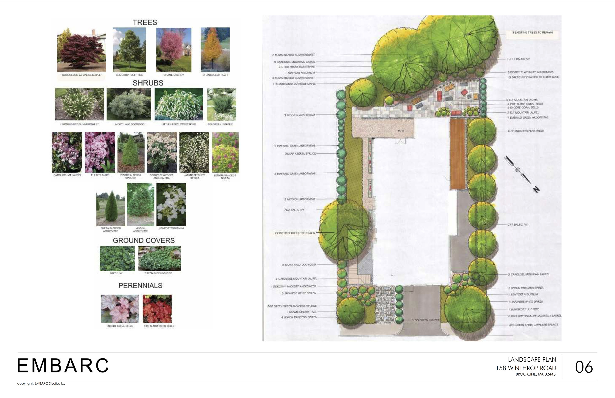 158W Landscaping plan JPG.jpg
