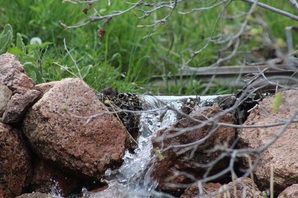 Water Trickle.jpg