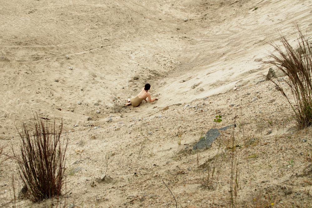 The Desolate.jpg