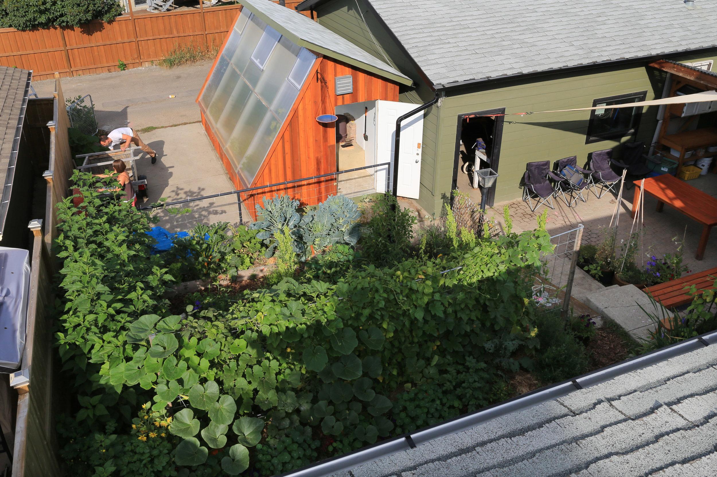 Rob's backyard greenhouse.