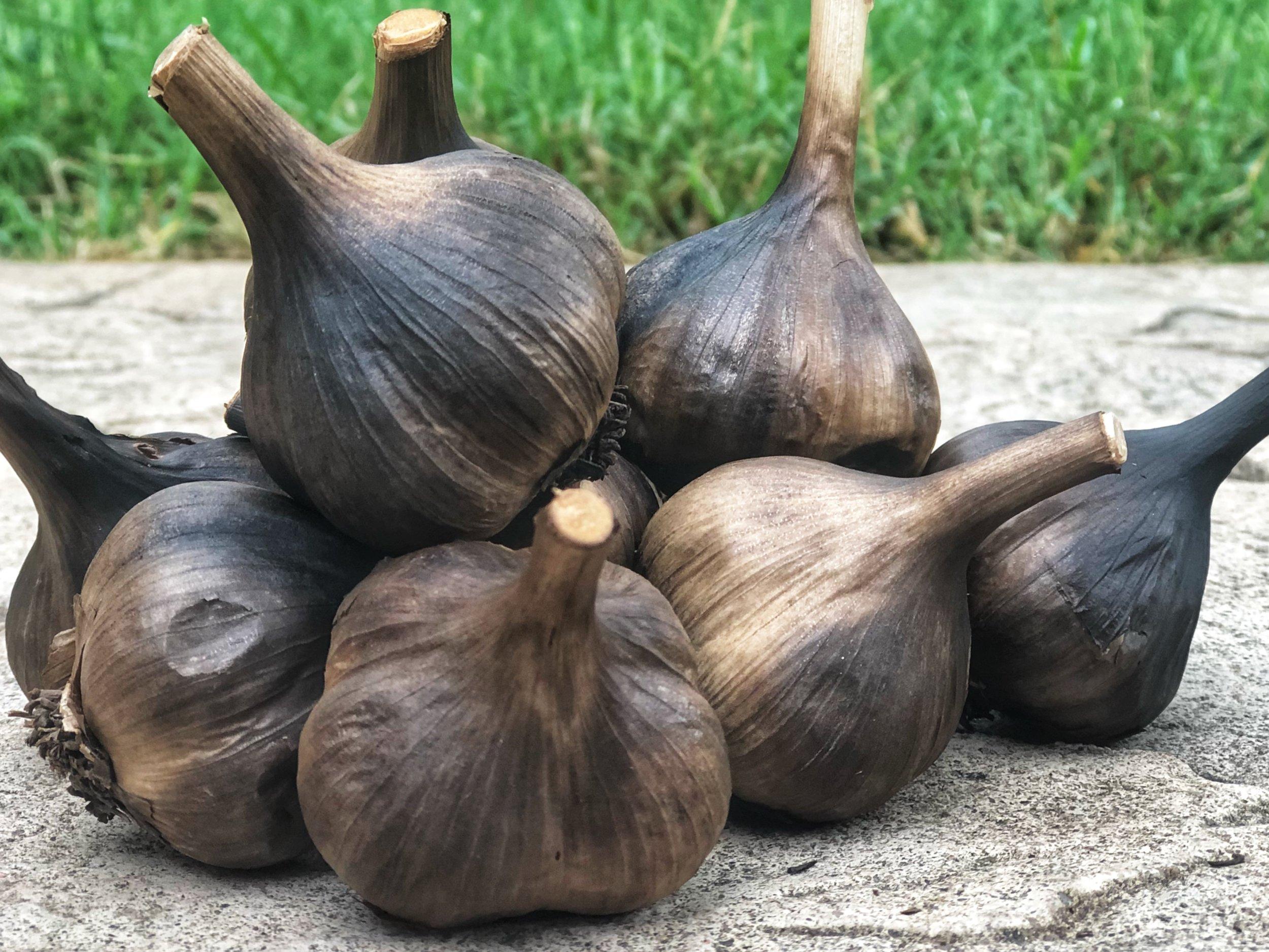 new website black garlic.JPG