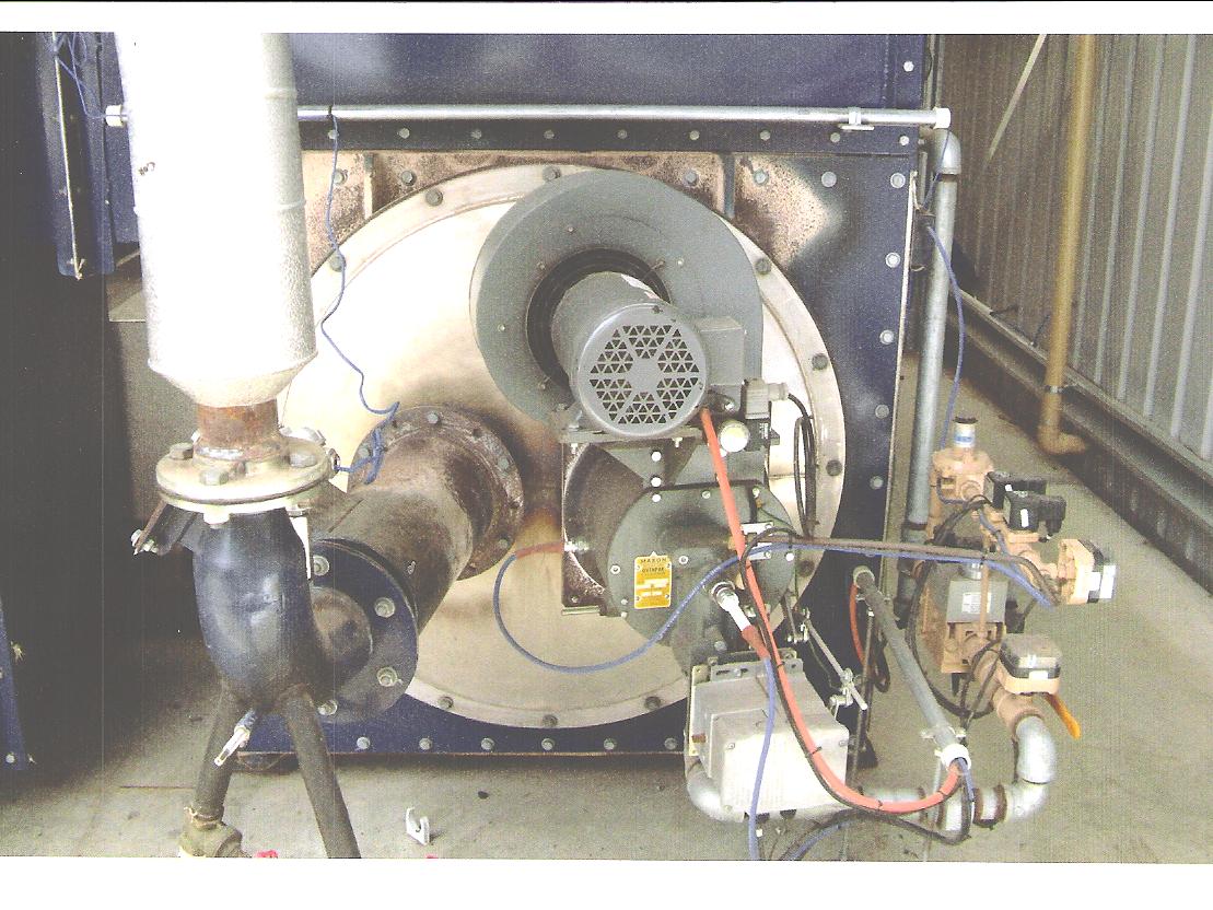 Dual Fuel Burners