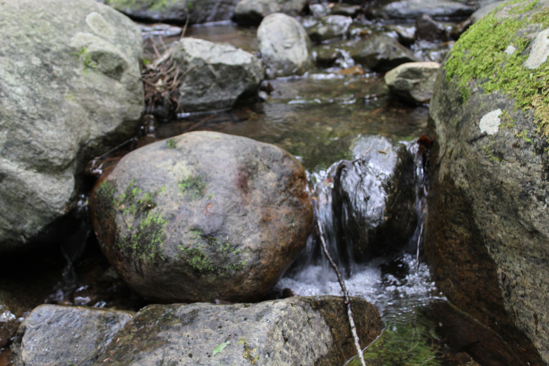 water and rocks.JPG