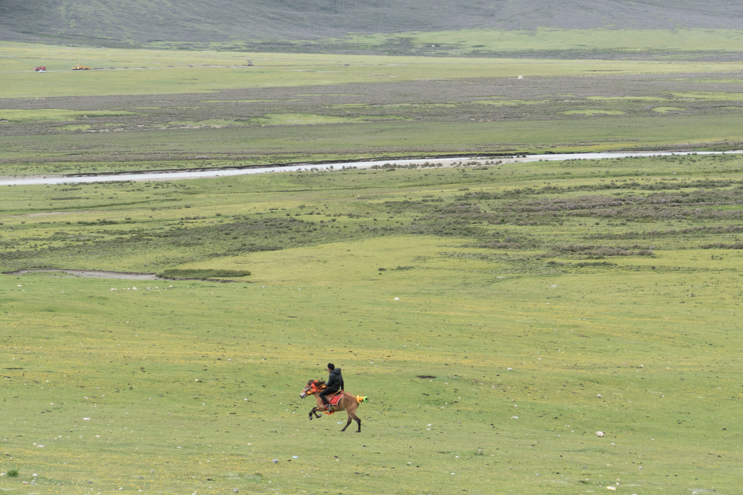 Galloping across the Tibetan plain