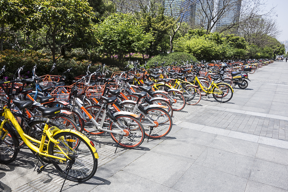 The scene each morning outside NYU-Shanghai with the two competing bike sharing companies Mobike (orange) and Ofo (yellow)