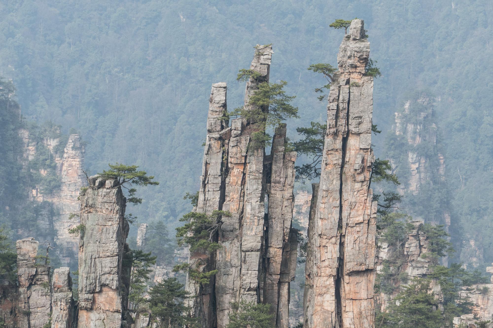 Pillars of quartzite sandstone in ZJJ National Park