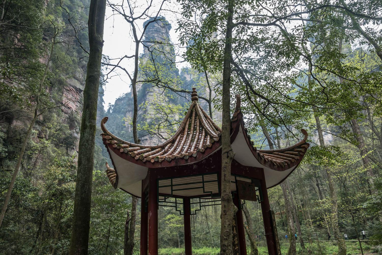 Pagoda and pillars