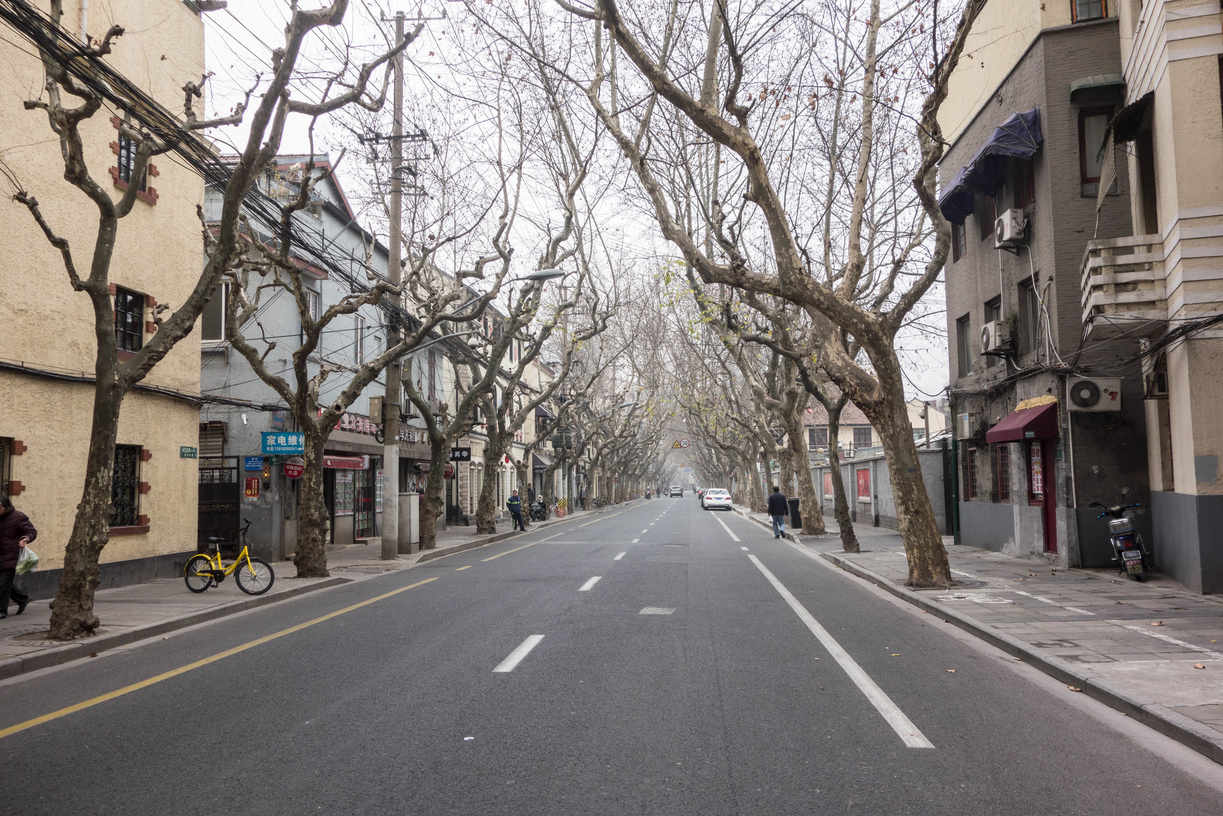 Our street in the French Concession in the winter