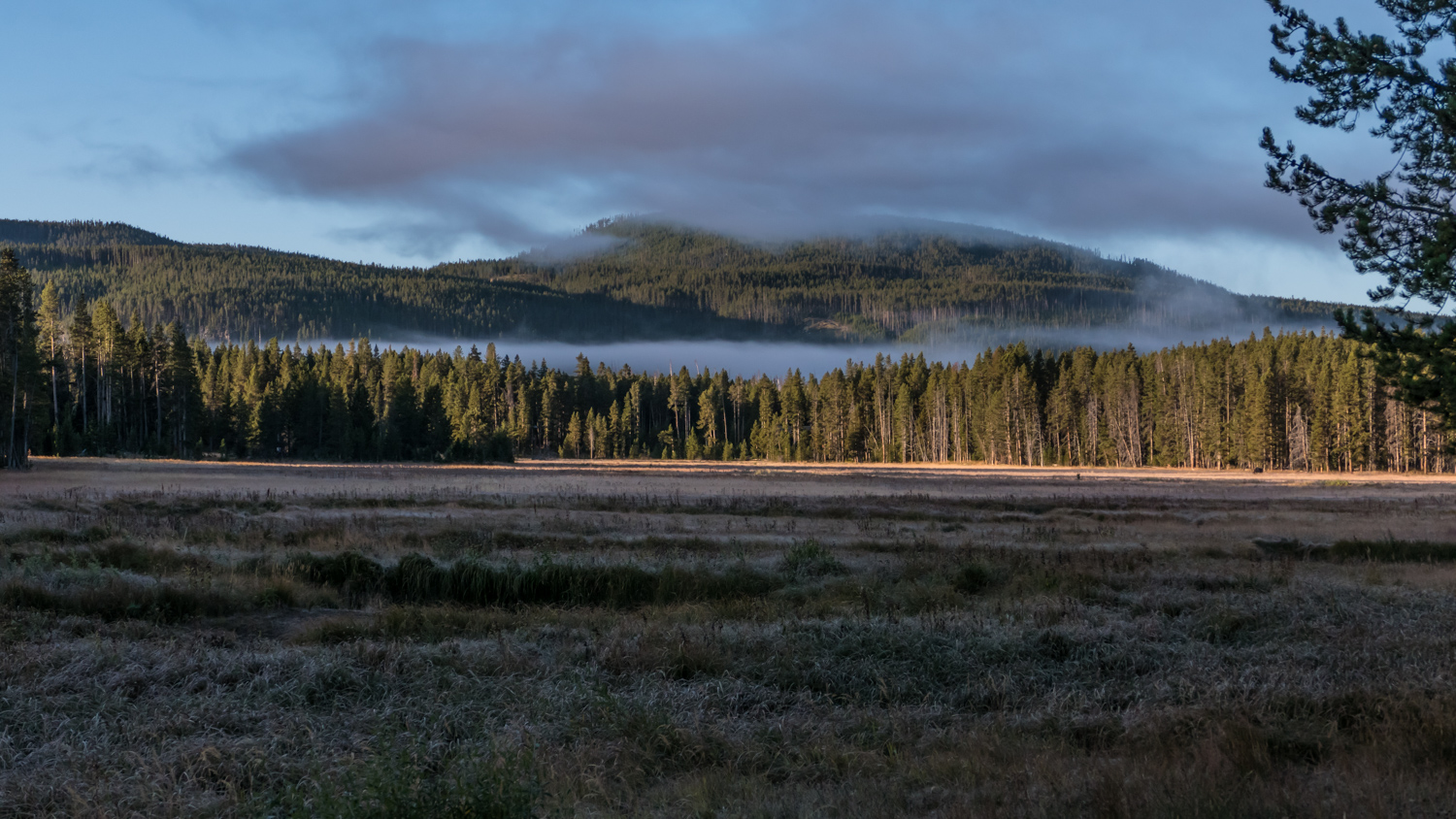 Daybreak at Norris campground on a frosty morning. Temperature was 24 def F this morning