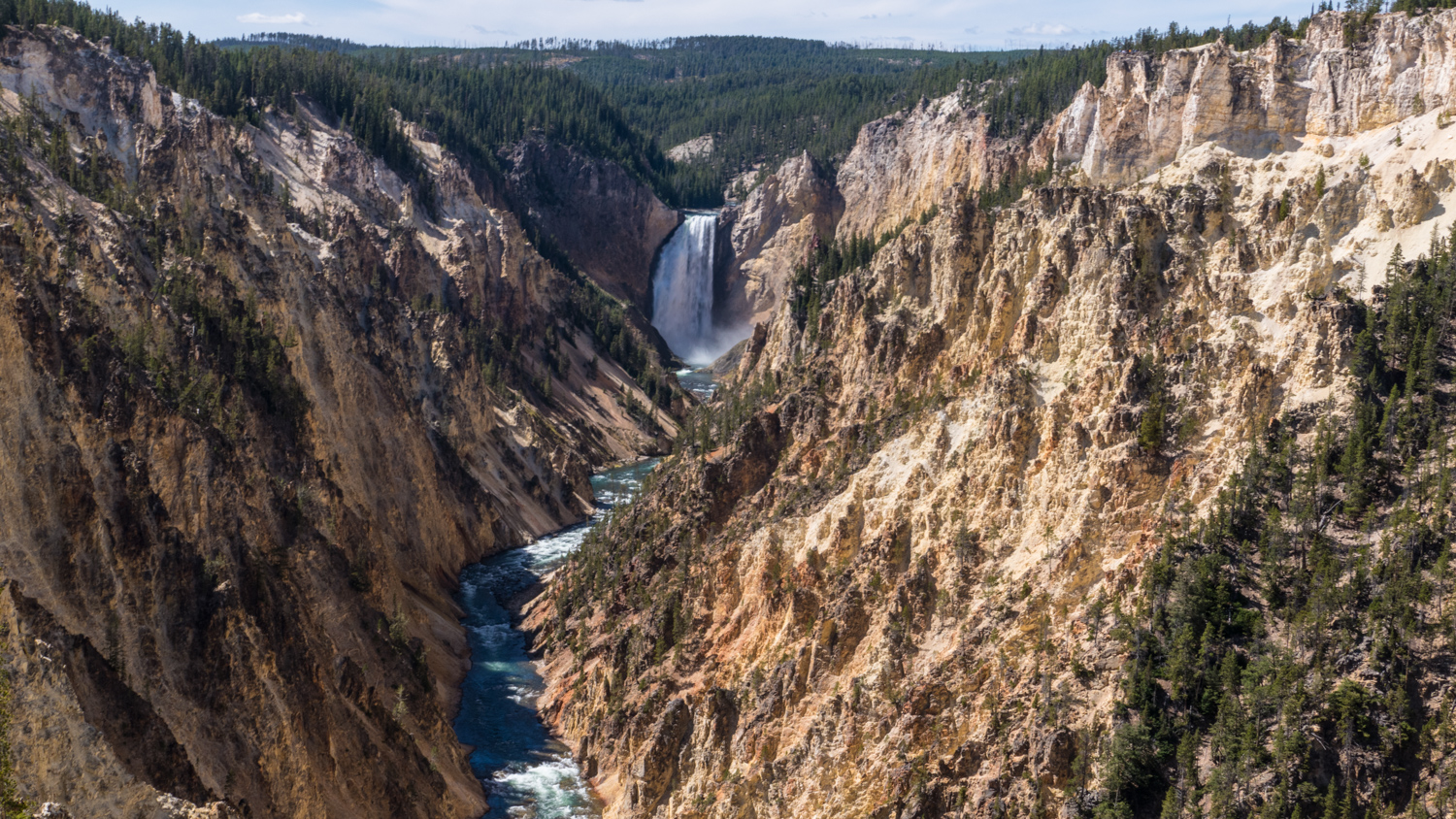 Grand Canyon of the Yellowstone and the Lower Falls