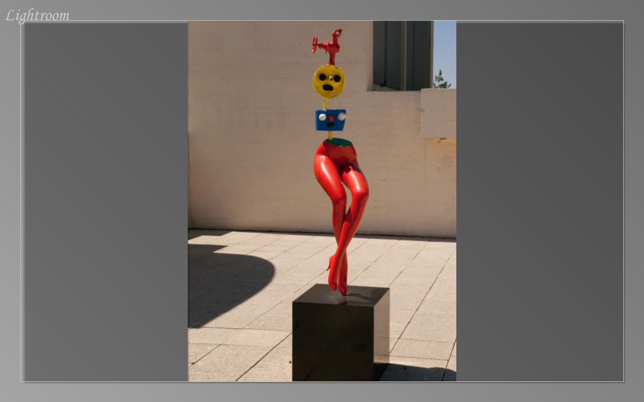 On the rooftop of the Juan Miro Museum