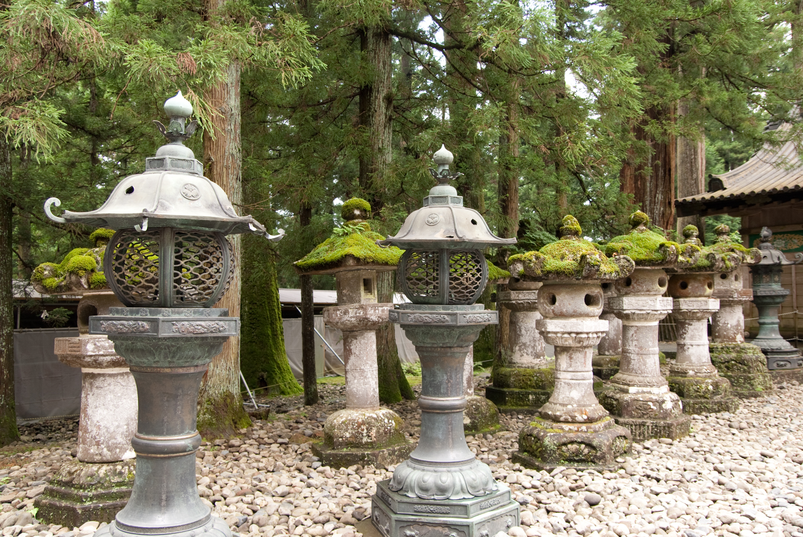 Stone lanterns at the Toshogu shrine